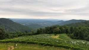Humpday Social at Stone Mountain Vineyards @ Stone Mountain Vinyards | Dyke | Virginia | United States